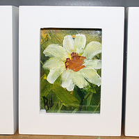 Oil painting 3 Daisies  ACEO  by Barbara Haviland