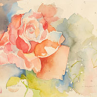 Watercolor Pink Rose by James Dougan