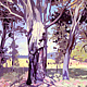 Oil painting The Old Gum Tree  by Jodi Jansons