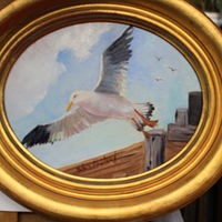 Oil painting 10x8Seagull (2) by Barbara Haviland