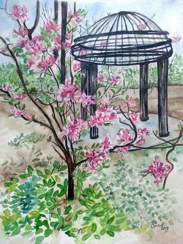 Watercolor Cheekwood Botanical Garden 1 by Kathleen Contri