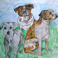 Three Amigos- Dogs by Kathleen Contri
