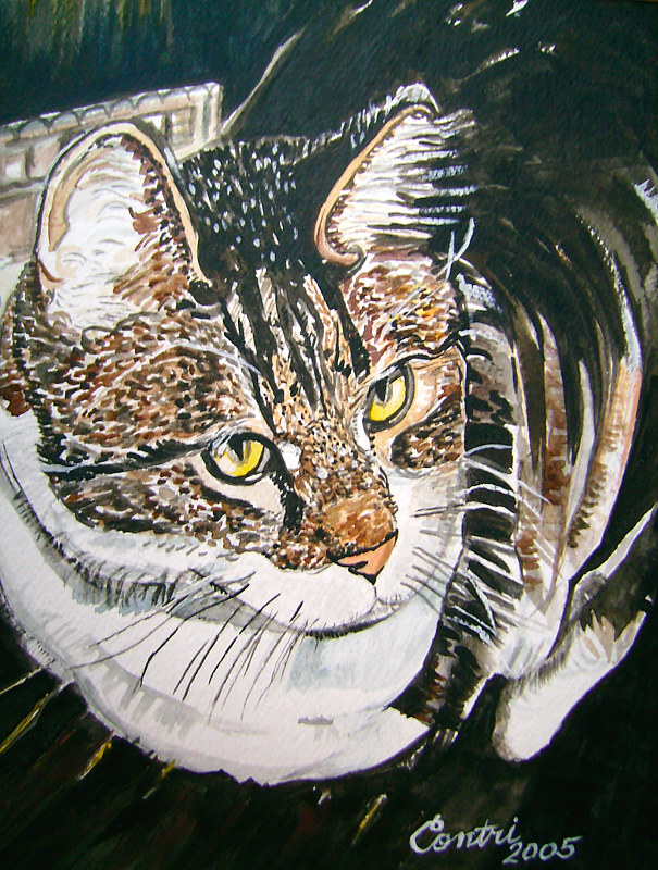 Resting Cat- Shadow 2005 by Kathleen Contri
