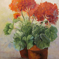 Geraniums oils on canvas by Barbara Haviland