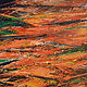 Acrylic painting Valley of Fire No. 1 by David Tycho