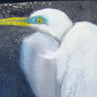 Painting Snowy Egret, bird,wading bird by Barbara Haviland