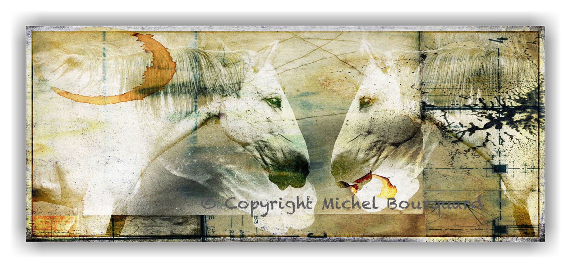 2 White Horses_ abstract by Michel Bourquard
