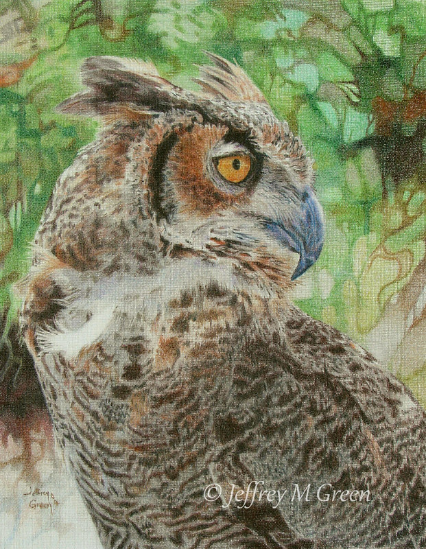 "© Jeffrey M Green. ""Great Horned"", 11"" x 14"", colored pencils on canvass. by Jeffrey Green"