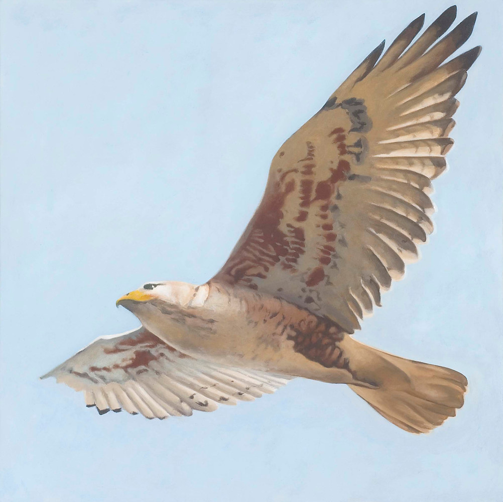 Oil painting Flight by Laurie Flaherty