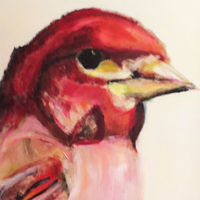 Oil painting Angus Pond Pine Grosbeak, 2017 by Edith dora Rey
