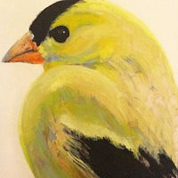 Oil painting Angus Pond Goldfinch, 2017 by Edith dora Rey