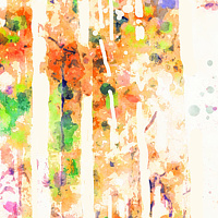Print ASPENS 7 M by Todd Scott Anderson