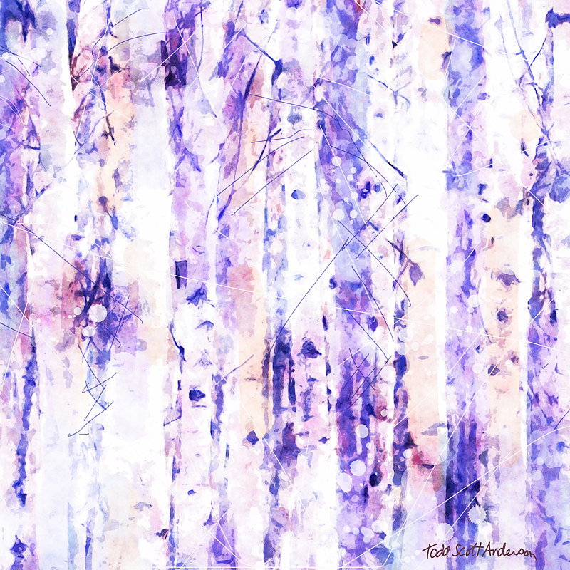 Print ASPENS 18 M by Todd Scott Anderson