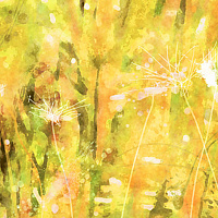 Print MOUNTAIN MEADOW 2 M by Todd Scott Anderson