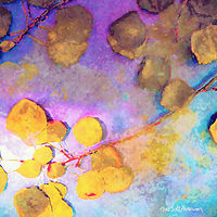 Print ASPEN LEAVES 17 M by Todd Scott Anderson