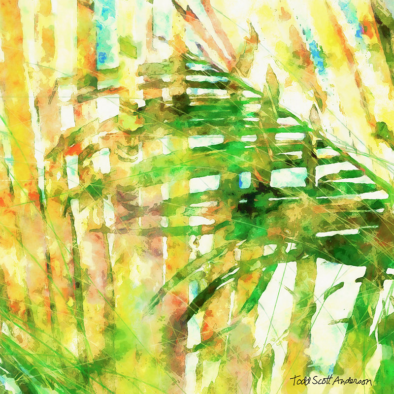 Print PALM 21 T by Todd Scott Anderson