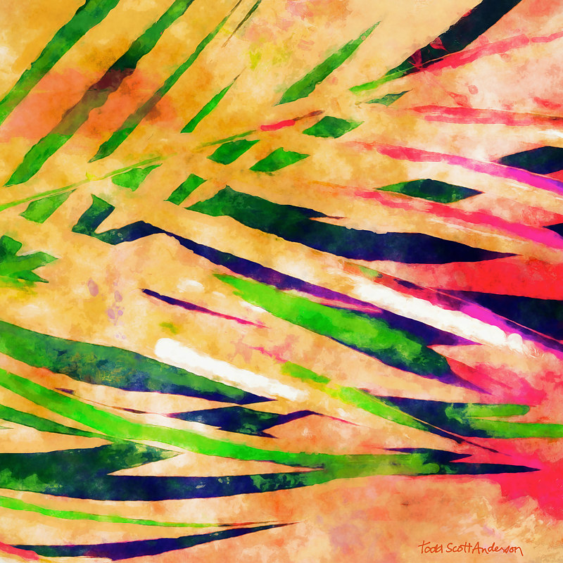 Print PALM 19 T by Todd Scott Anderson
