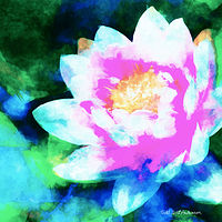 Print WATER LILY 16 T by Todd Scott Anderson