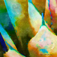 Print SONORA AGAVE 14 D by Todd Scott Anderson
