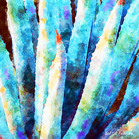 Print MOJAVE AGAVE 4 D by Todd Scott Anderson