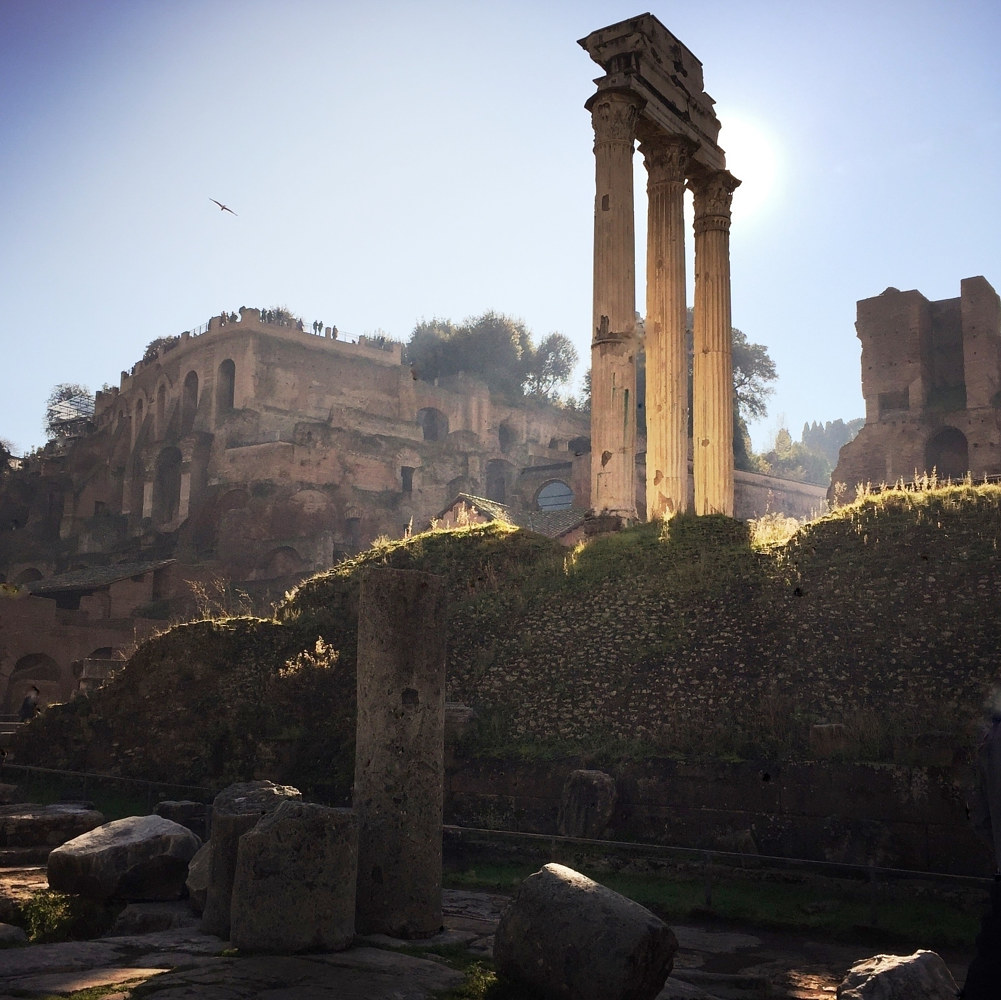 Roman Forum by Susan Raines