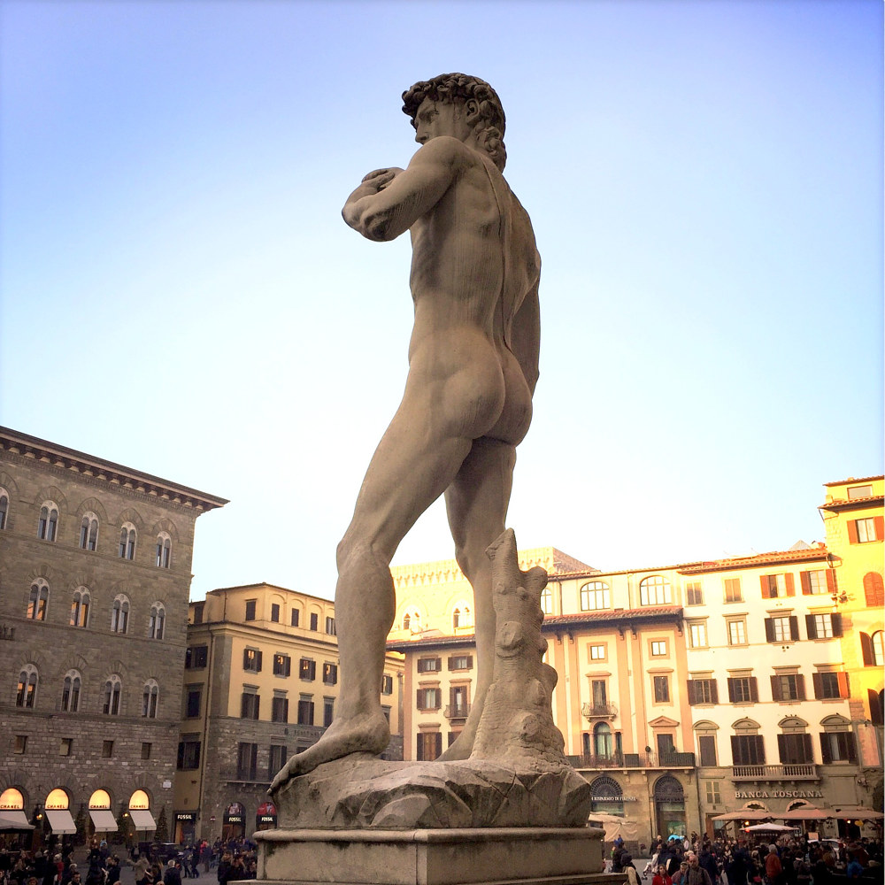 Michelangelo's David (original in Accademia Gallery), Florence by Susan Raines