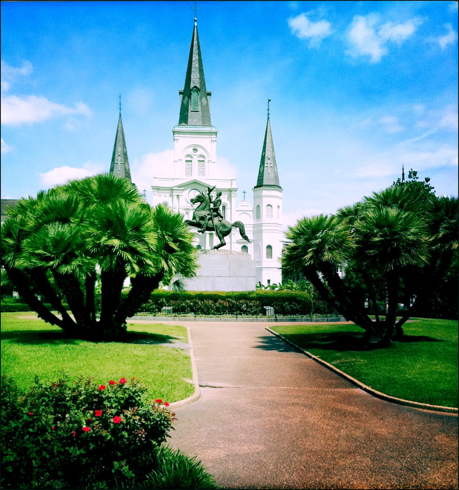 St. Louis Cathedral by Susan Raines