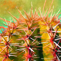 Print SONORA SAGUARO 10 D by Todd Scott Anderson