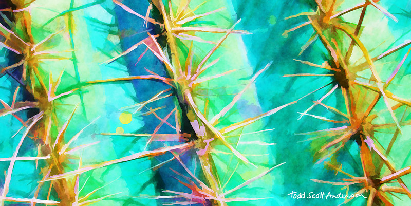 Print SONORA SAGUARO 7 D by Todd Scott Anderson