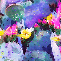 Print MOJAVE CACTUS 23 D by Todd Scott Anderson