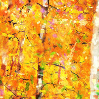 Print ASPENS 26 M by Todd Scott Anderson