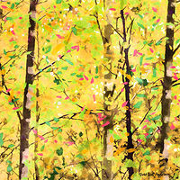 Print ASPENS 27 M by Todd Scott Anderson