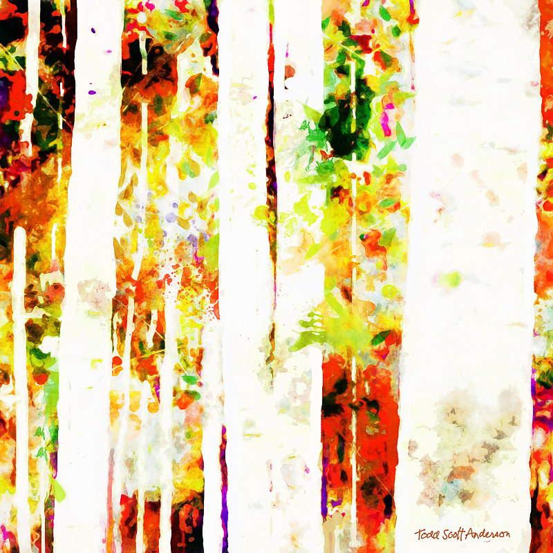 Print ASPENS 22 M by Todd Scott Anderson