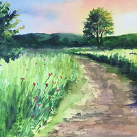 Watercolor Through the Field, New Fairfield CT. by Betty Ann  Medeiros
