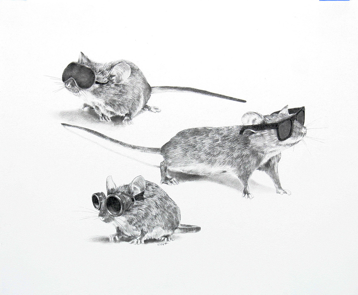 Drawing Three Blind Mice by Ellen Cornett