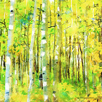 Print ASPENS 8 M by Todd Scott Anderson
