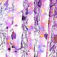 Print ASPENS 17 M by Todd Scott Anderson