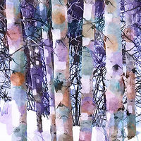 Print ASPENS 23 M by Todd Scott Anderson