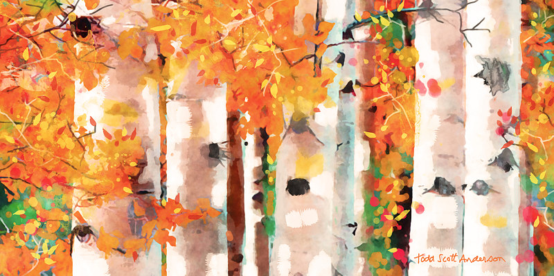 Print ASPENS 35 M by Todd Scott Anderson