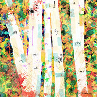 Print ASPENS 15 M by Todd Scott Anderson