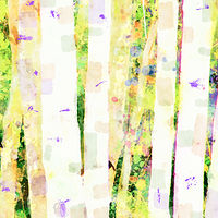 Print ASPENS 6 M by Todd Scott Anderson