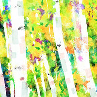 Print ASPENS 14 M by Todd Scott Anderson