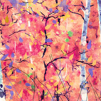 Print ASPENS 38 M by Todd Scott Anderson