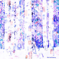 Print ASPENS 40 M by Todd Scott Anderson