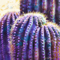 Print SONORA SAGUARO 24 D by Todd Scott Anderson