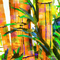 Print BAMBOO 18 T by Todd Scott Anderson