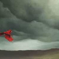Cardinal in Flight_24x48 by Adam Thomas