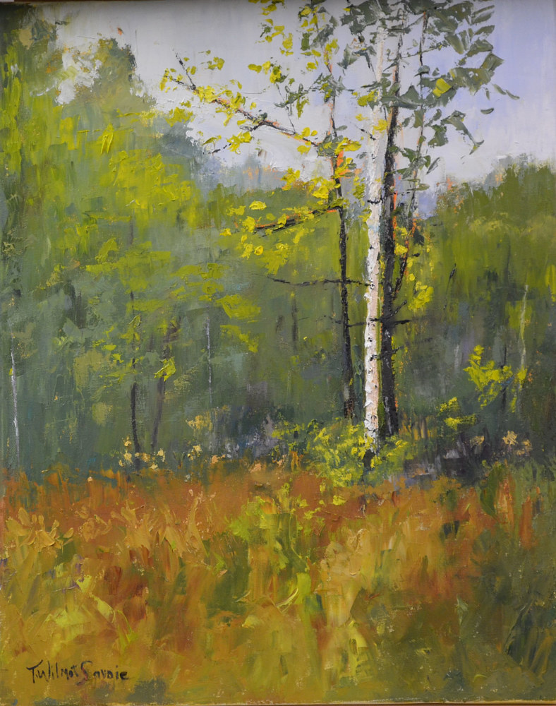 Oil painting Birch and Company by Patricia Savoie