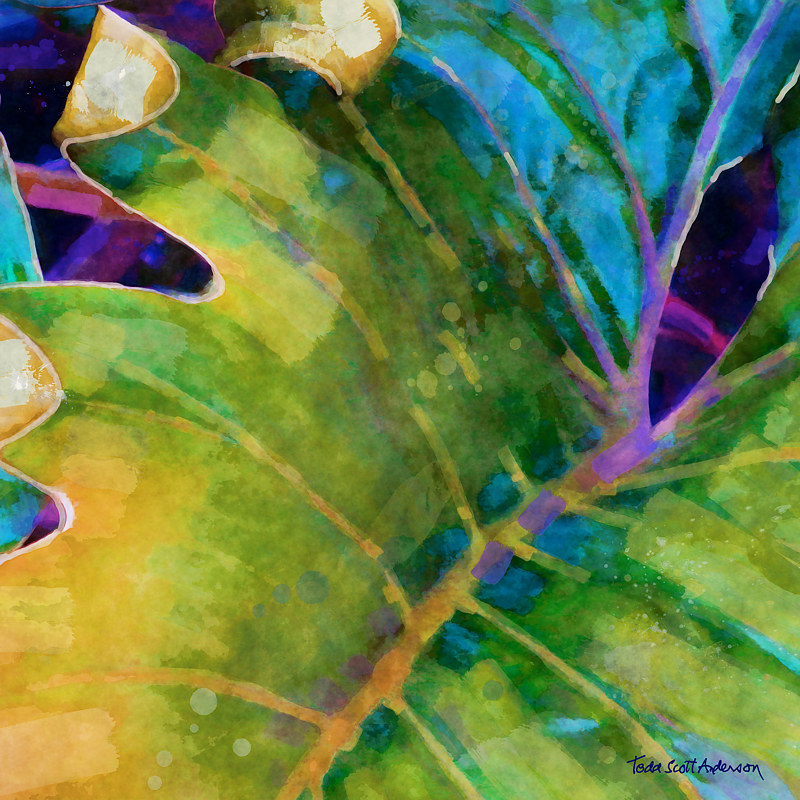 Print TROPIC FLORA 41 T by Todd Scott Anderson