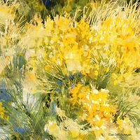 Print MOUNTAIN MEADOW 31 M by Todd Scott Anderson